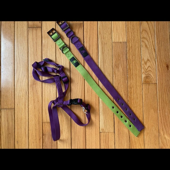 Top Paw collars and harness